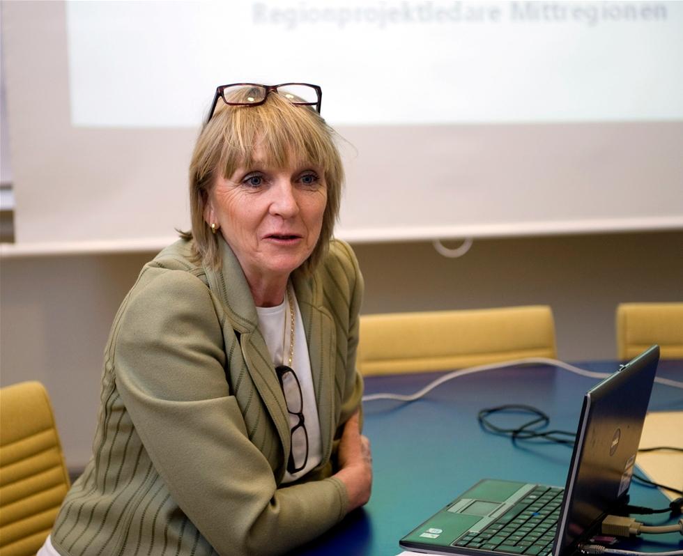 Skatteverket har kontrollerat svenska åkerier och funnit brister hos 40 av 50 granskade branschföretag. Det har konstaterats fusk när det gäller bland annat skatteinbetalningar och sociala avgifter. – Vi har granskat företag där vi misstänker fusk, säger Pia Bergman, Skatteverkets nationella samordnare mot grov ekonomisk brottslighet.