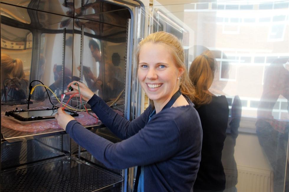 KTH-forskare har utvecklat en metod för att ta reda på hur elbilsbatterier mår. Metoden ersätter dyra och komplicerade labbtester av batterierna då den kan bäddas in i en mobilapp. Den visar bland annat körsträcka per laddning för elbilsbatterier, och kan vara ett stöd för de som ska köpa en begagnad elbil.