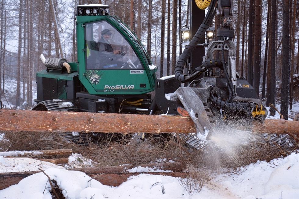 Rutinerade skogsmaskinförarna Marko Huttunen, Johan Elofsson och Fredrik Olers har i vinter blivit ytterligare en erfarenhet rikare. I brandområdet i Västmanland kör de bandburna maskiner från ProSilva. I uppdraget ligger att rädda virket i mjuka, blöta och sönderbrända skogar. – Maskinernas bärighet är fantastisk. Dessutom är maskinerna väldigt stabila. Det är bra för både underlaget och komforten, konstaterar Marko och Fredrik.