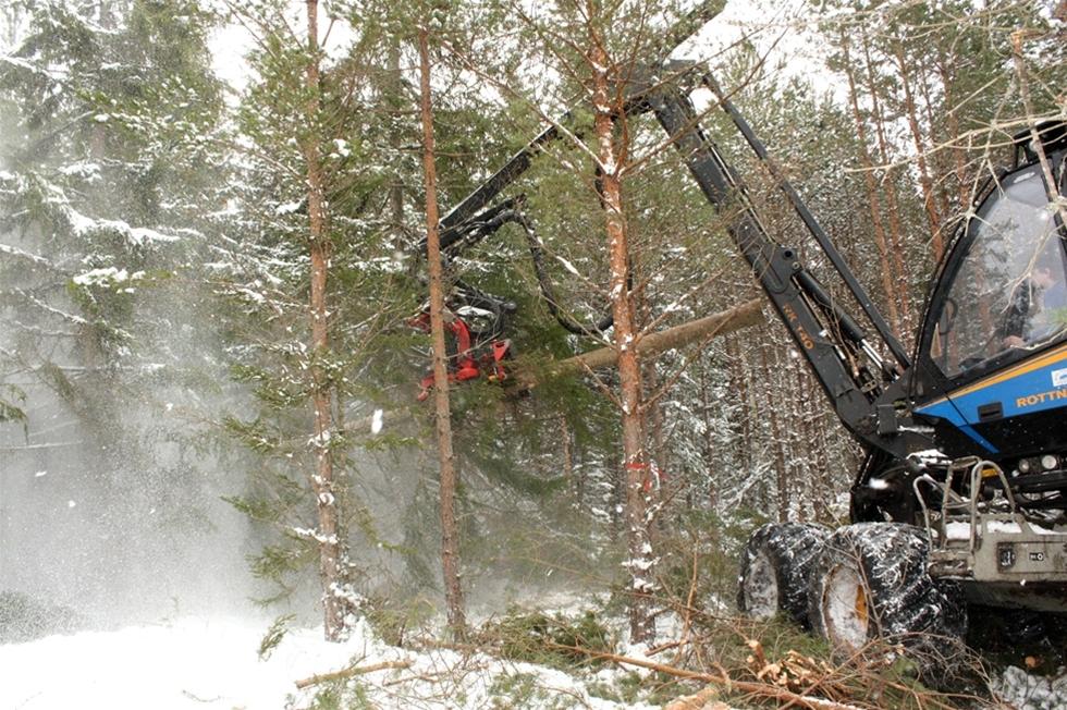God planering, tydliga traktdirektiv samt kunskap hos såväl tjänstemän och entreprenörer. Det har Norra Skogsägarna identifierat som de viktigaste verktygen för måluppfyllelse och produktivitet i skogen. I ett projekt binds länkarna samman så att hela kedjan blir starkare.