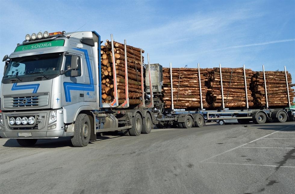 Vad har företag som Ikea, Jysk och Jula för trä i sina produkter? Och hur har träet avverkats? Det ska Skogsstyrelsen hålla koll på nu när EU:s timmerförordning börjat gälla. – De nya tuffa bestämmelserna kommer att slå hårdast mot importörerna av trävaror, säger Stefan Karlsson, Skogsstyrelsen.