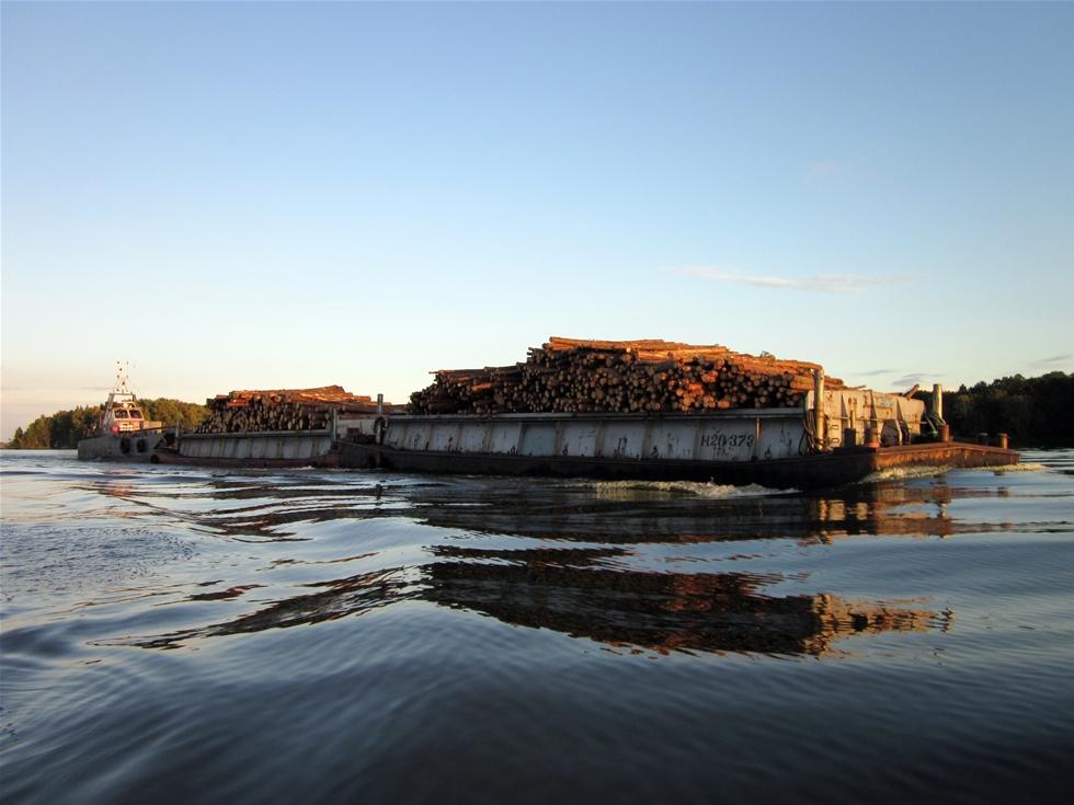 Stormen 1969 tog ner det mesta av skogen på ön Järflotta söder om Nynäshamn i Sörmland. Skogen som därefter planterade har vuxit till sig, om än en smula långsamt. När den nu ska gallras är det Kuddby Trädfällning AB och Esse Karlssons Åkeri AB som svarar för Mellanskogs insatser på ön. Därifrån fraktas virket med pråm av PRL Sverige AB till Söderby brygga – en sträcka på cirka 15 mil, sjömil alltså.